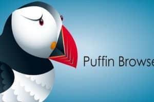 Arriva Puffin il browser superveloce per Windows