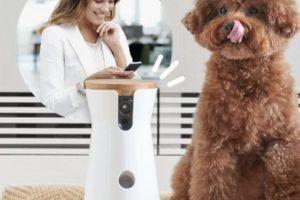 Furbo Dog Camera la videocamera per cani