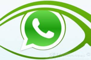 WhatsApp entrare in chat da invisibili ecco come fare