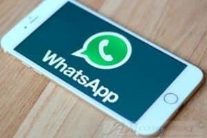 WhatsApp rischio denuncia per chi abusa della piattaforma