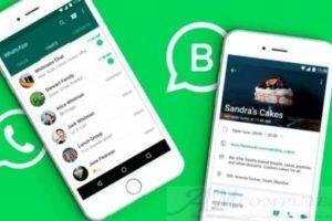 WhatsApp Business diventa un e-commerce