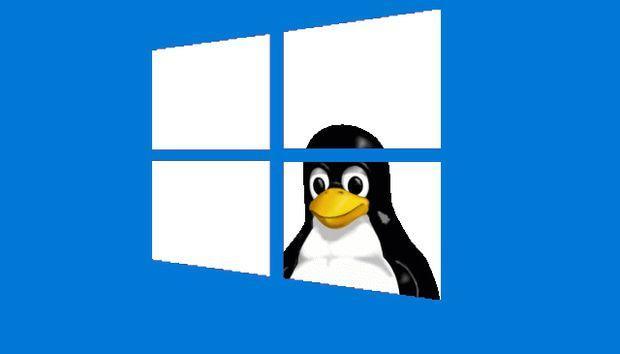 Sistema Operativo Linux open source